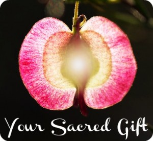 mysacredgift