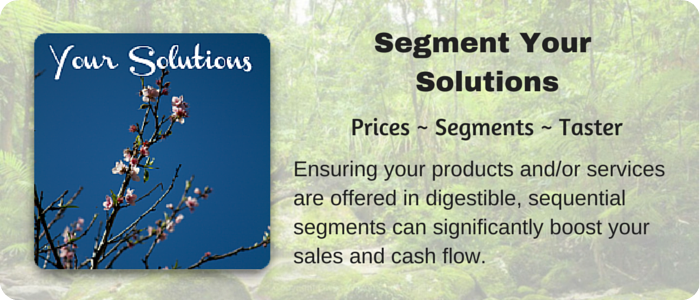 Segment Your Solutions