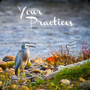 my-practices