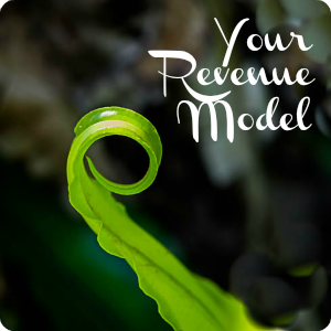 my-revenue-model